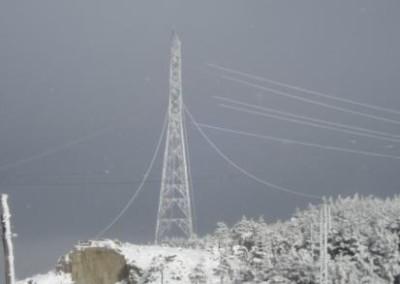 Firma de Autorización a Red Eléctrica de España