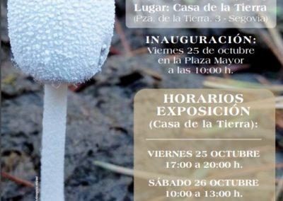 Exposición micológica San Frutos 2019